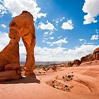 Delicate Arch by Jacinthe Brault