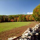 Autumn in New England by Alberto  DeJesus