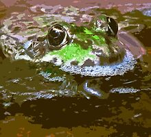 """""""Chives""""  The Star Frog summer in all its forms 21  paint (c)(h) by Olao-Olavia / Okaio Créations fz 200 by Okaio - Olivier Caillaud"""