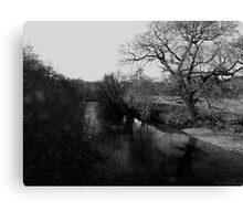 Reflections in the River Dart Canvas Print
