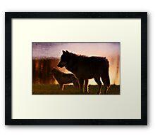 SUNSET WOLVES Framed Print