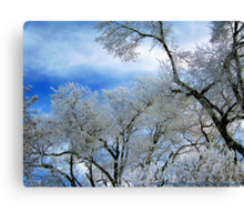 Frozen Trees (Ice Fog) Canvas Print