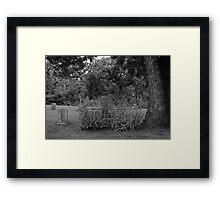 The Precious Stone ~ Graveyard Stone Framed Print