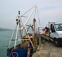 Fisherman Unloading Their Catch by lynn carter