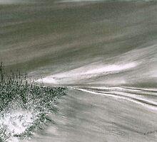 Shoreline by Debbie  Adams
