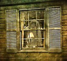 Widow in the Window by Scott Mitchell