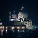 Santa Maria della Salute, Venice by Robert Case