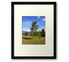 Summer Wind Framed Print