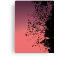 Sunset Leaves & Sky Canvas Print