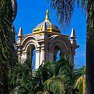 Balboa Park Through the Trees by Heather Friedman
