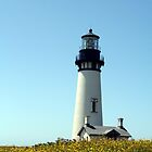Yaquina Head Lighthouse by searchlight
