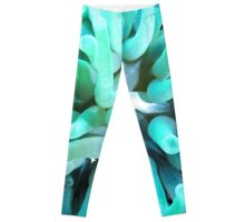 Green Sea Anemone and Squat Shrimp Leggings