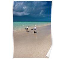 Island Storms - Heron Island - Australia Poster