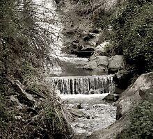 Cascading Waters - Monrovia, CA by dirtfaery