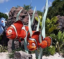 Nemo at Walt Disney World by searchlight