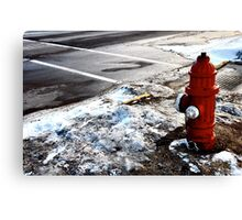 Frozen Fire-Hydrant Canvas Print
