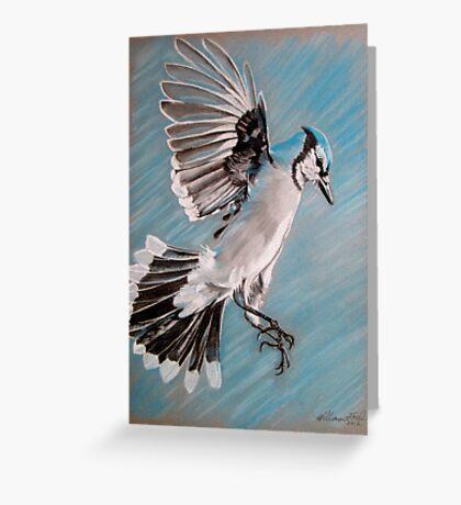 """Blue Jay"" Greeting Card"