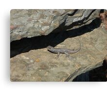 Mister Lizard!! Canvas Print