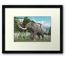 Columbian Mammoth Framed Print