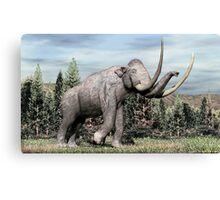 Columbian Mammoth (Mammuthus columbi) Canvas Print