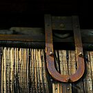 Wood Grain & Rusted Iron by waddleudo