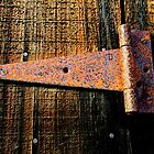 &quot;Rusting Hinge on Barn Door&quot; BEST VIEWED LARGE by waddleudo