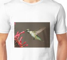 Ruby Throated Humming Bird Unisex T-Shirt