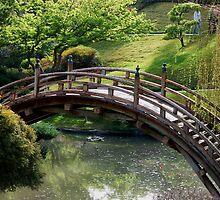 Bridge over pond by loiteke