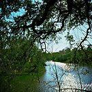 An artistic look to Lake Hale by Ann Reece