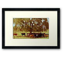 Rural Charm Framed Print