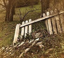 Broken Fences by Barbara  Brown