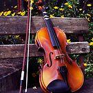 Violin. by Adoni