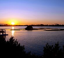 Intracoastal sunset by ♥⊱ B. Randi Bailey