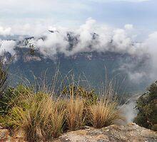 Grose Valley Mist - Anvil Rock NSW Australia by Bev Woodman