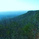 Cheaha Mountain State Park by Charldia
