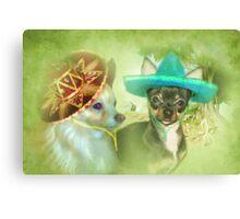 Little Sombrero's ....Chihuahua Canvas Print