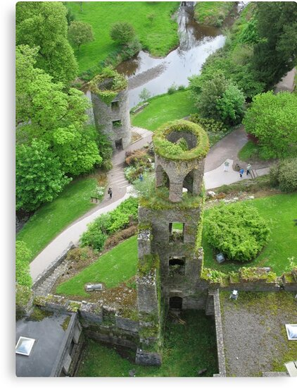View from Blarney Castle by Splogy
