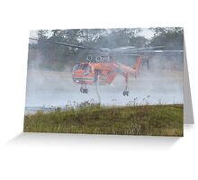Erickson Air-Crane - Isabelle in the mist Greeting Card