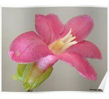 Sober floral Poster