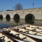 Bridge and boats by Steve