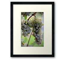 A Drop of White Framed Print
