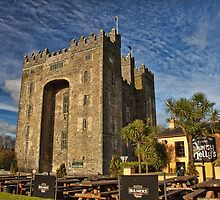Bunratty Castle and Durty Nellys Pub, County Clare, Ireland by upthebanner
