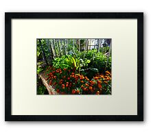 Home Vegetables Framed Print
