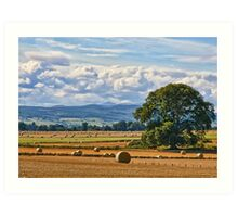 Rural Nature Countryside Scenic Landscape Photography Art Print