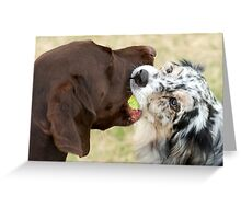 You're Not Gettin' This Ball! Greeting Card