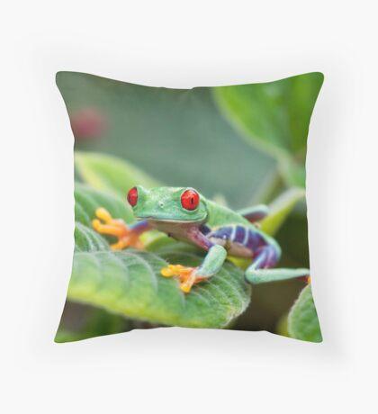 Wide Eyed Throw Pillow