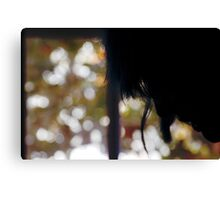 She was curtains for me... Canvas Print