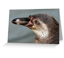 Penguin Portrait Greeting Card