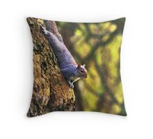 Keep A Look Out Throw Pillow