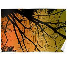 Sun Rise at Sylhet  Poster